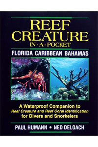 Pocket Creature ID Book