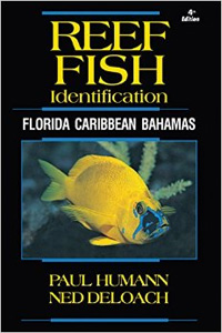 Reef Fish ID Book